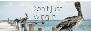"""Don't just """"wing it"""""""